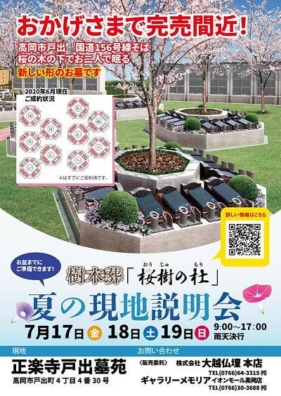 桜樹の杜0702